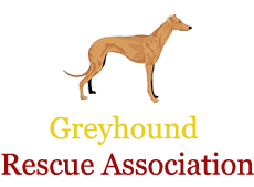 Greyhound Rescue Association